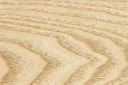 Maple Wood Veneer: Texture Reference for Choose Wood Material of Wooden Photo Watches